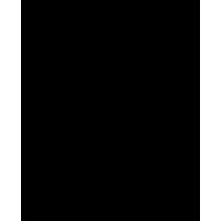 Disco's Hit Logo